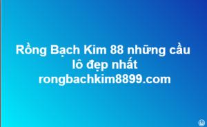 Rồng Bạch Kim 88 những cầu lô đẹp nhất